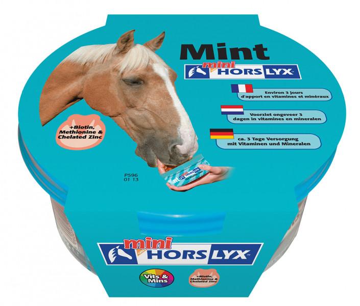 HORSLYX, pochúťka pre kone vo forme lizu - Mäta