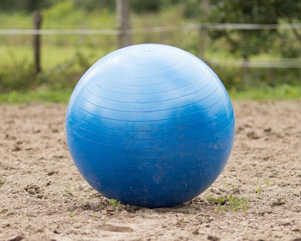Lopta pre koňa - modrá