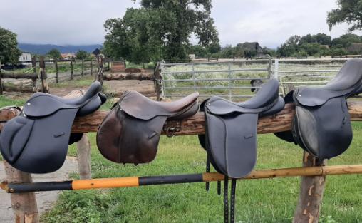 Ako vybrať správne sedlo pre koňa?